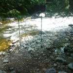Low Water on Gull River